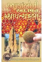 Jivadao Ni Adbhut Sthapatyakala